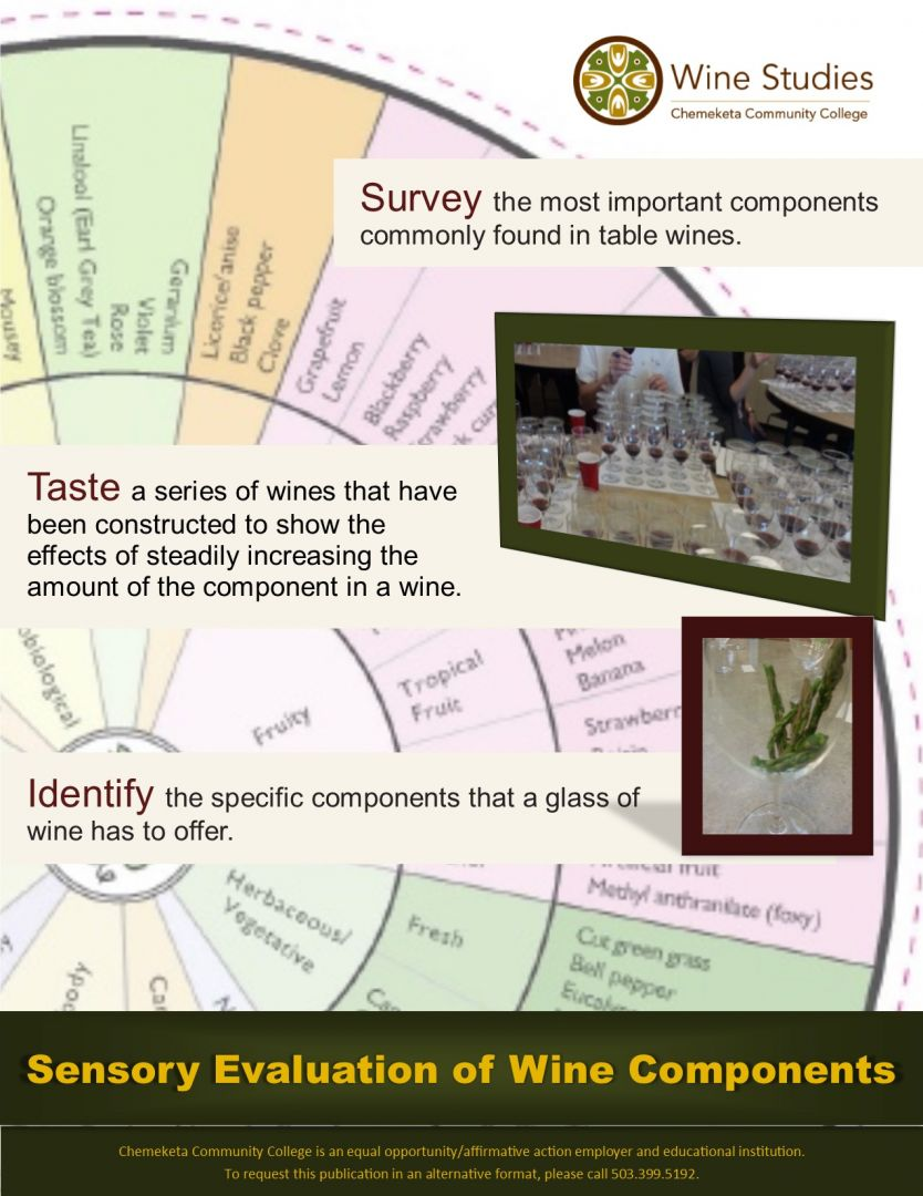 sensory evaluation of wine pdf