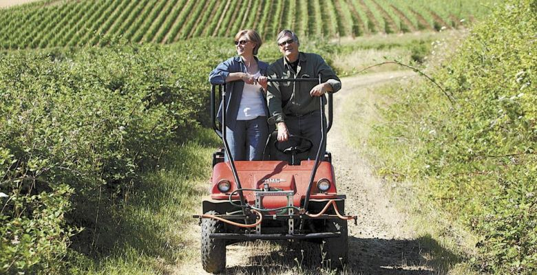Ellen and Robert Brittan survey their 23-acre estate vineyard on the 128-acre property they own in the McMinnville AVA.##Photo provided.