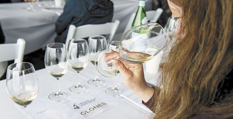 Each attendee was given a flight of Chardonnay to taste and evaluate.##Photo by Andrea Johnson