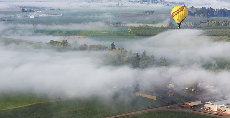 Fog lies low across the farmland.##Photo by Bryan Rupp