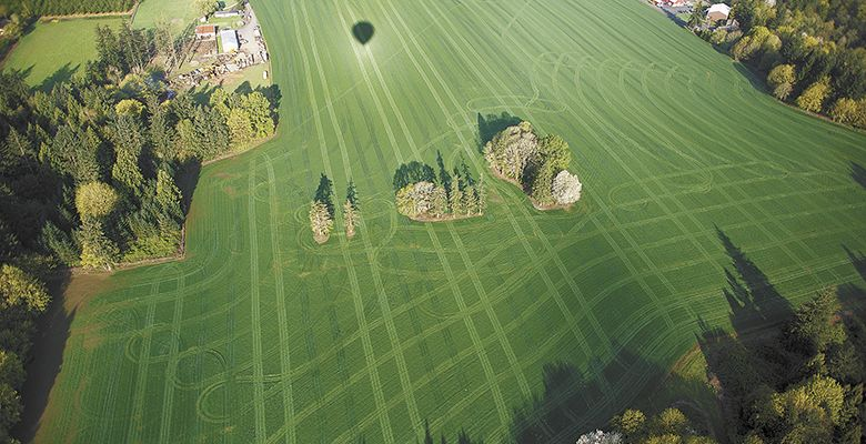A shadow of the balloon and tractor tracks appear on the field below.##Photo by Bryan Rupp