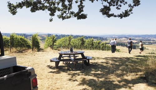 Oregon Wine Press dedicated to Oregon wine, pinot noir, food
