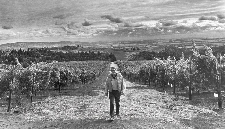 Cal Knudsen stands among his young vines in the Dundee Hills. ##Photo provided