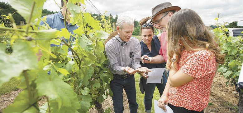 Linfield students learn about sustainable practices at Crawford Beck Vineyard in the Eola-Amity Hills AVA with owner David Beck (left) and Wine Studies Director Greg Jones. ##Photo courtesy of Linfield College
