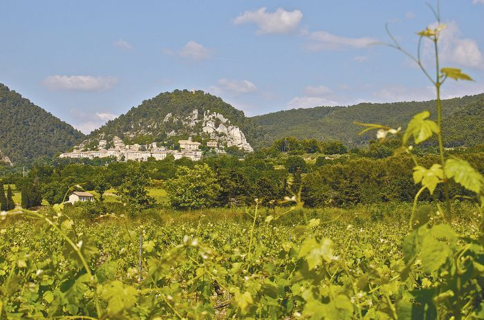 """Seguret is a few kilometers north of Gigondas, and the vines in the foreground are probably Grenache. We had stopped nearby at one of the best, informal country restaurants called Le Fleur Bleue for lunch after meeting producers in Gigondas. These amazing little medieval towns are clustered against every stony hillside in this part of Vaucluse, France."" - Steven Baker.Photo by Steven Baker"