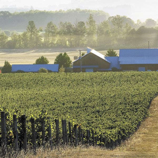 Benton-Lane is located in the southern portion of the greater Willamette Valley AVA.Photo by Andrea Johnson