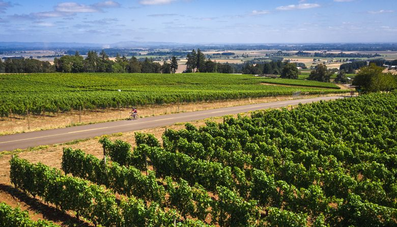 """Everybody