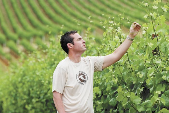 Winemaker Mark Chargin checks vines at one of the winery's many vineyards. Photo provided.
