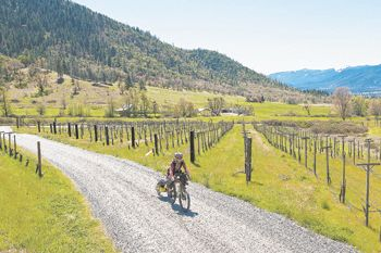 Cyclist Glenn Charles bikes a winding road through Wooldridge Creek Vineyard in Southern Oregon's Applegate Valley.