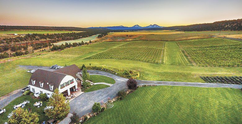 Faith, Hope and Charity Vineyards in Terrebonne offers exceptional views of Mount Bachelor, Broken Top and the Three Sisters. ##Photo by Senneh O Reilly Heirloom Images Photography