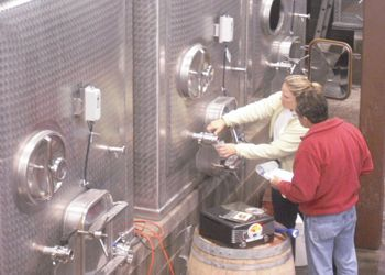 Guided by Linda Donovan (not pictured), SOWI students learn hands-on winemaking at the Pallet Wine Co. Photo provided.