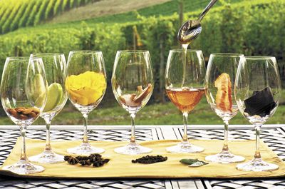 In these tasting glasses you'll find a variety of flavors commonly found in different types of wine: almond, green apple, rose, mushroom, honey, bacon and chocolate; on the mat: