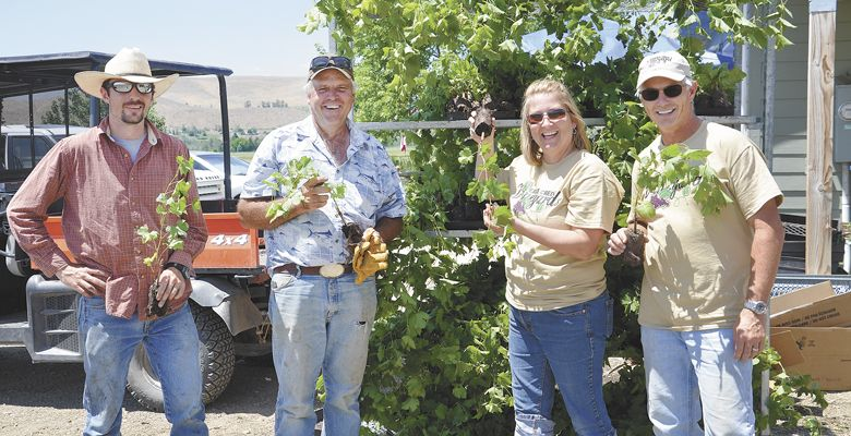 Travis Cook (from left), Michael Cook, Jacki Adams and Lance Adams hold the promise of a new planting. The Cooks are managing the vineyard process. ##Photo by Timothy Bishop