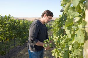 Bledsoe and winemaker Chris Figgins currently produce Bledsoe s label, Doubleback.