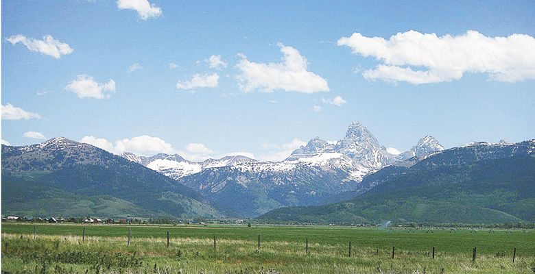 A backdrop of the Grand Tetons makes for dramatic scenery at Lark's Meadow pasture land in Idaho. ##Photo provided