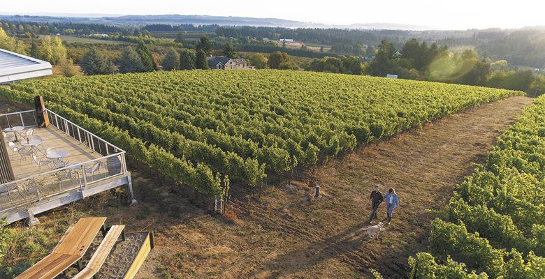 Scott and Annie Shull walk 