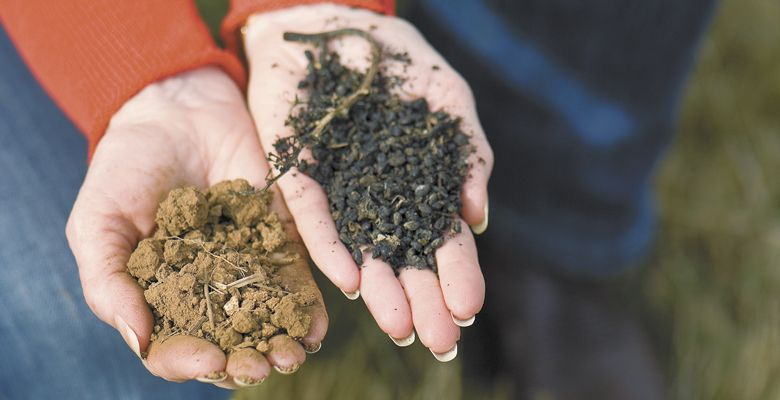 Carol Girard of Benton-Lane, located in the proposed AVA of Lower Long Tom, holds Bellpine soil (left) and compost made from grape pomace. ##Photo by Andrea Johnson