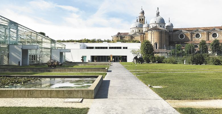 Orto Botanico di Padova, site of the 2017 AAWE Conference, with the Piazza Duomo in the background.  ##Photo by Neal Hulkower