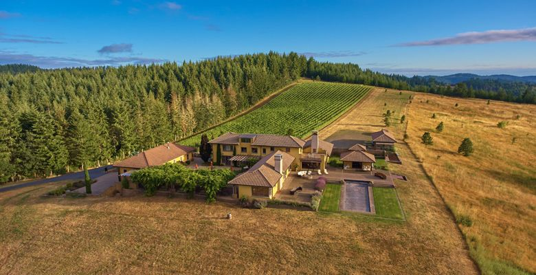 Iris Vineyard's tasting room overlooks Chalice Vineyard at Iris Hill in the beautiful Oregon Coast Mountain Range. ##Photo provided