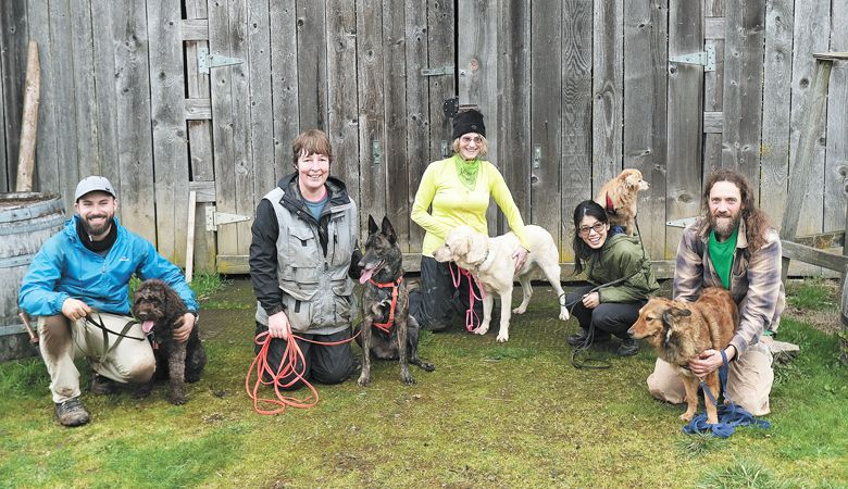 Joriad
