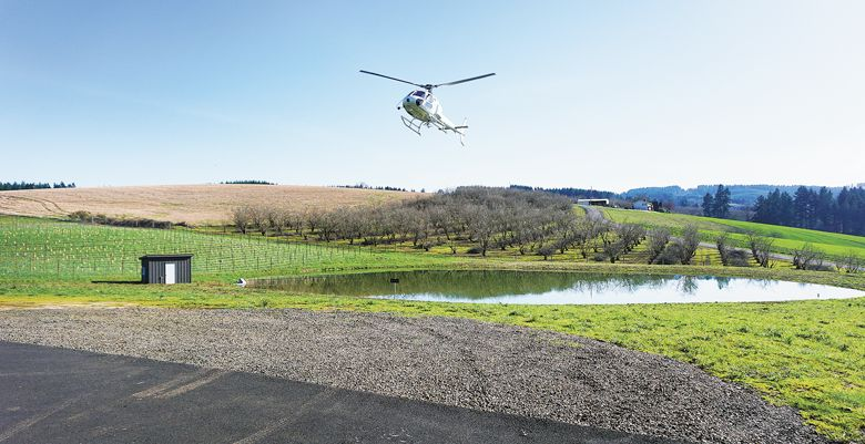 Tour DeVine by Heli lands at Soléna Estate outside Yamhill. ##Photo courtesy of Precision Helicopters