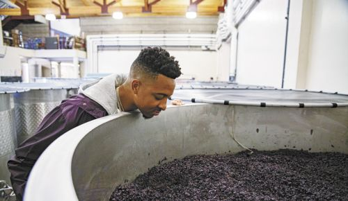 CJ McCollum takes a peek at fermenting Pinot Noir during a tour at Adelsheim Vineyard, where winemaker Gina Hennen makes his wine, ##Photo by Justin Tucker / Nine Eighty Four