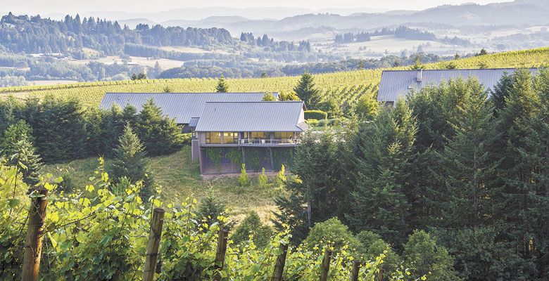 Willakenzie Estate, located in the Yamhill-Carlton AVA, has been growing Pinot Noir and other varietals since 1992. ##Photo by Andrea Johnson