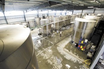 NW Wine Co.'s new facility is filled with towering tanks and other equipment.