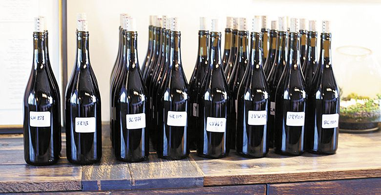 Different lots of Brooks Pinot line the bar waiting to be used in the somms' blends. ##Photo by Mary Cressler