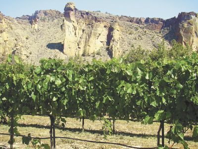 The monolith known as Monkey Face rises above its namesake vineyard at Ranch at the Canyons. Photo provided.