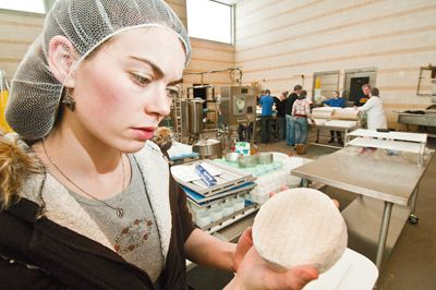 An OSU student checks on artisan cheese she made at the school's Arbuthnot Dairy Center in Corvallis. Photo by Lynn Ketchum.