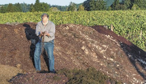 Marchesi sifts through compost at Montinore Estate. ##Photo by Andrea Johnson