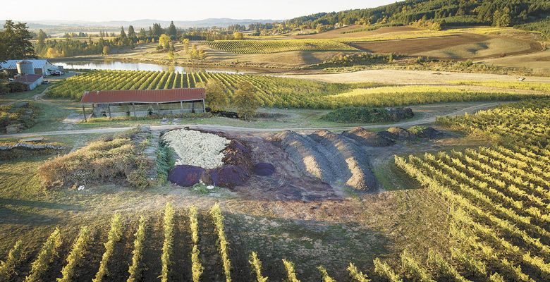 An aerial perspective of the compost piles at Montinore Estate. ##Photo by Andrea Johnson