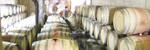 Airlie winemaker Elizabeth Clark cleans barrels at the Monmouth winery. ##Photo provided.