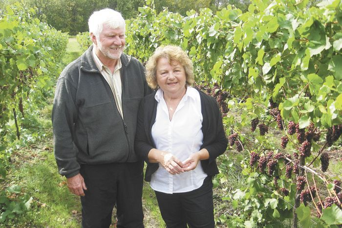Craig and Gabriele Keeler stand amid Pinot Noir vines nearing harvest time. Their vineyards employ the Scott Henry double trellising system. Photo by Marcus Larson.