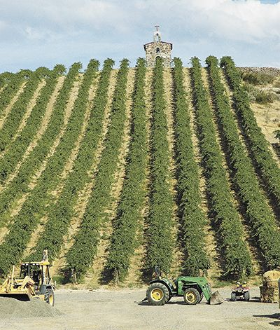 Lady Hill sources fruit from Washington vineyards such as Red Willow, located in the far western end of Yakima Valley AVA. In homage to the many chapel vineyards in France, Red Willow owners, the Sauer family, built the Monsignor Chapel on a hillside planted mostly to Syrah. ##Photo provided