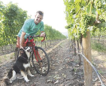 Gus Janeway rests on his bike at Gold Vineyard in Talent, with owners Randy and Rebecca Gold s dog, Maya.