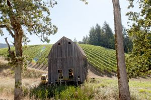 An old barn on the Colene