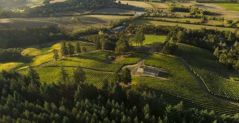 A bird's eye view of Résonance Vineyard and winemaking facility in the Yamhill-Carlton AVA. ##Photo by Andrea Johnson