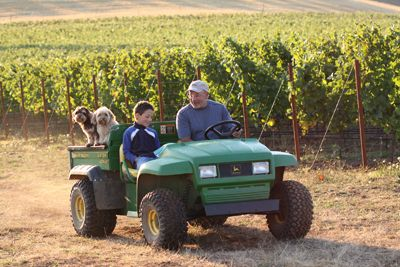 Soter, his son, Austin, and family dogs Buster and Biscuit take a ride around their Mineral Springs Estate Vineyard. Photo by Andrea Johnson.
