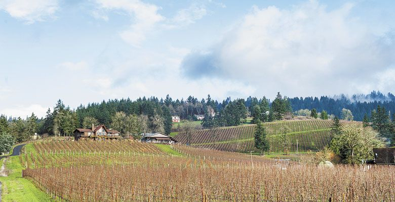 VIDON Vineyard and its winery is located near Newberg. ##Photos by Paul Cunningham, Paul Cunningham Photography