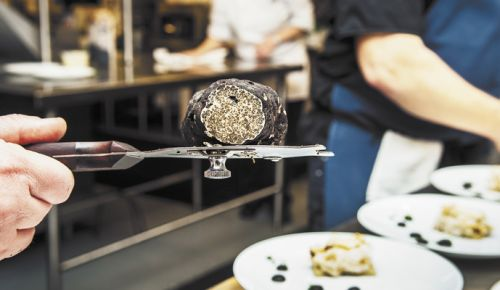 An Oregon black truffle balances on a slicer behind the scenes during the James Beard Legacy Dinner at Domaine Serene. ##Photo by Kathryn Elsesser