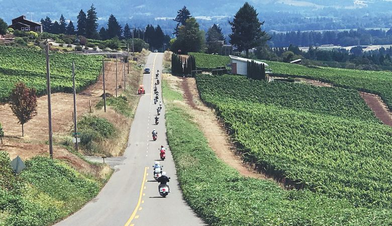 Participants in the Slow Ride Wine Country Vespa event travel down the road through the vines. ##Photo provided