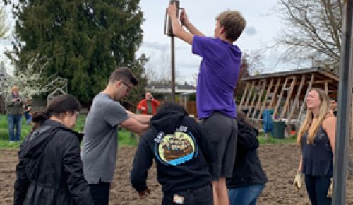Linfield students help pound posts into the ground for the college's new micro-vineyard. ##Photo provided