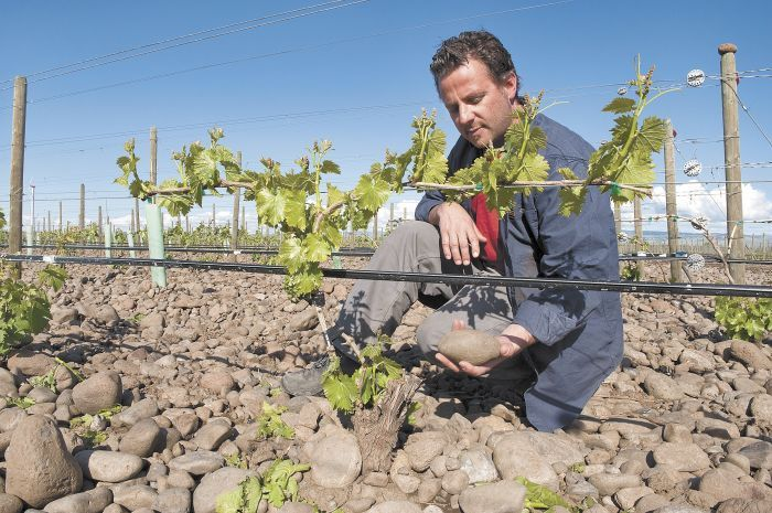 Winemaker Christophe Baron of Cayuse holds a rock in his stony vineyard.